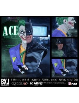 DC Comics Bust 1/2 BXJ 43 cm