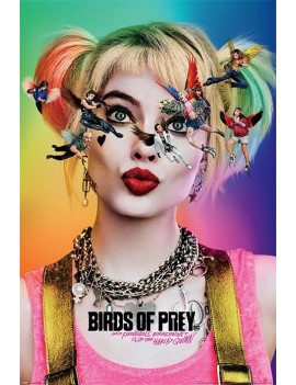 Birds Of Prey Poster Pack Seeing Stars 61 x 91 cm (5)