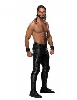 WWE HeroClix Expansion Pack: Seth Rollins