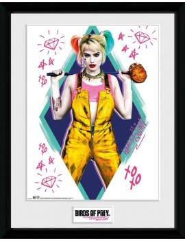 Birds of Prey Framed Poster Harley Quinn