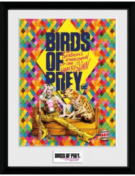 Birds of Prey Framed Poster One Sheet Hyena