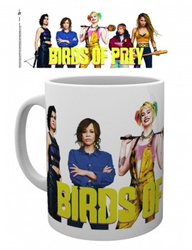 Birds of Prey Mug Group