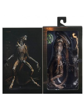 Alien 3 Action Figure...