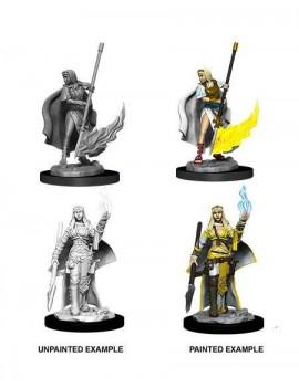 Pathfinder Battles Deep Cuts Unpainted Miniatures Female Human Oracle (Magic User) Case (6)