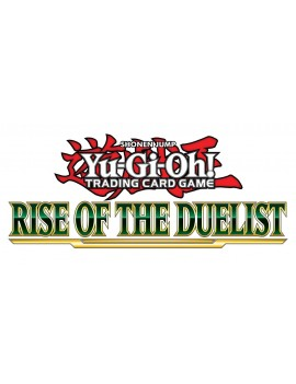 Yu-Gi-Oh! Rise of the Duelist Booster Display (24) *German Version*