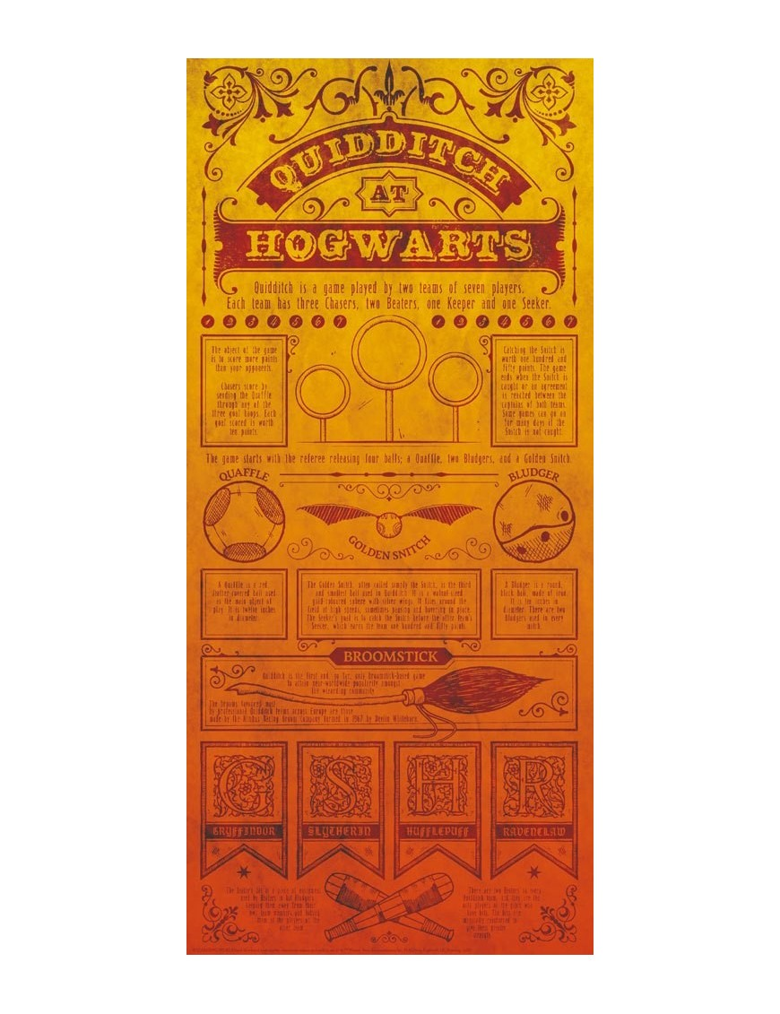 Harry Potter Art Print Quidditch 42 x 19 cm