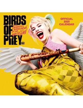 Birds of Prey Calendar 2021 *English Version*