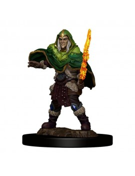 D&D Icons of the Realms Premium Miniature pre-painted Elf Fighter Male Case (6)