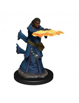 D&D Icons of the Realms Premium Miniature pre-painted Human Wizard Female Case (6)