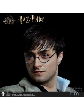 Silicone head for the Harry Potter Life-Size Statue MMHP-HPDH-1