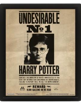 Harry Potter Framed 3D Effect Poster Pack Potter / Sirius 26 x 20 cm (3)