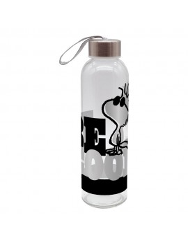 Peanuts Water Bottle Be Cool