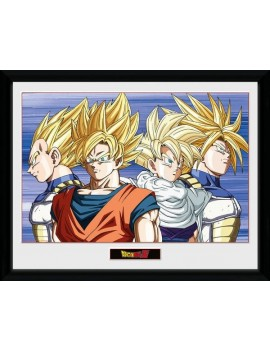 Dragonball Z Framed Poster Group 45 x 34 cm