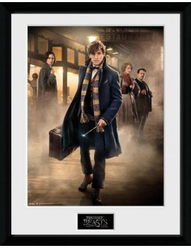 Fantastic Beasts Framed Poster Group Stand 45 x 34 cm