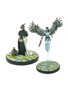 D&D Collectors Series Miniatures Unpainted Miniatures Aerisi Kalinoth & Air Priest