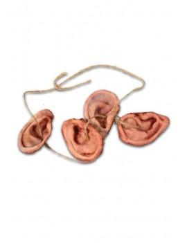 Walking Dead Replica 1/1 Daryl's Walker Ear Necklace