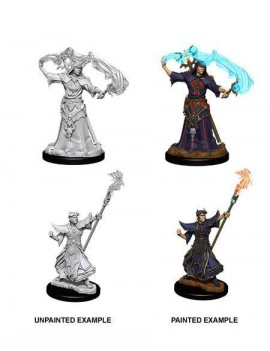 Pathfinder Battles Deep Cuts Unpainted Miniatures Male Human Sorcerer Case (6)