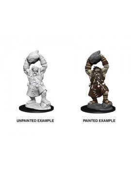 Pathfinder Battles Deep Cuts Unpainted Miniatures Ogre Case (6)